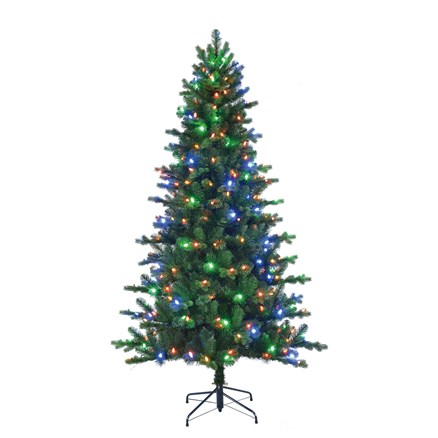 Milton Spruce multicolor LED 215