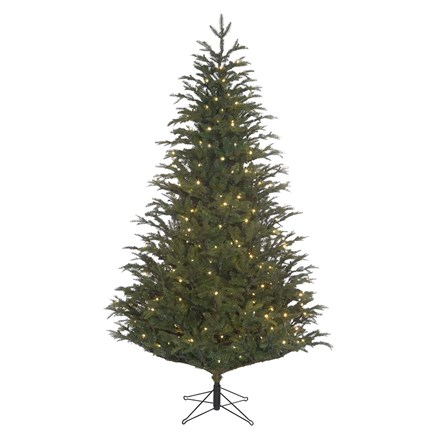 Frasier Fir Green 230 LED